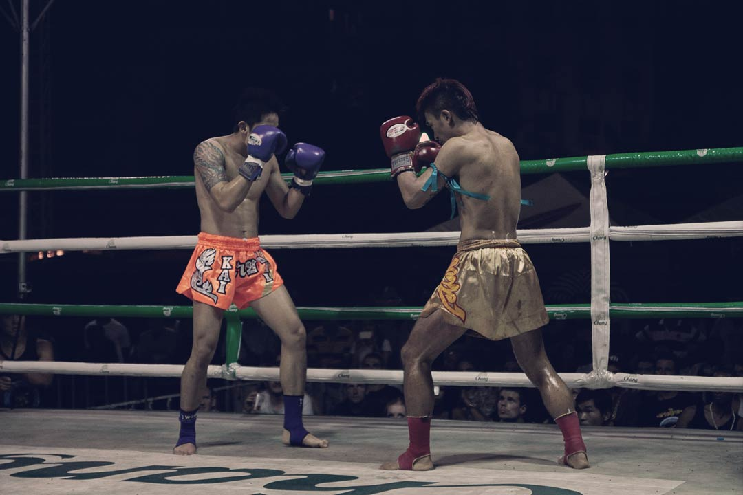 jorge-noguerales_fight-club6